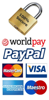 Payment System Powered By Worldpay