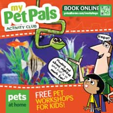 Petpals workshop