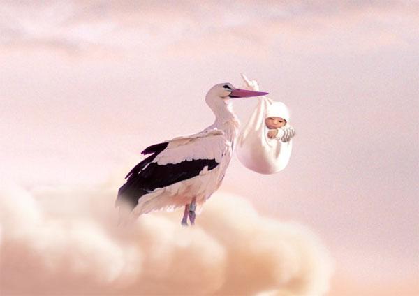 Stork Delivers