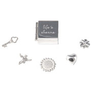 Silver Lifes Charms in a Silver Box
