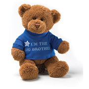 Im The Big Brother Teddy Bear by Gund