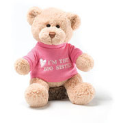 Im The Big Sister Teddy Bear by Gund