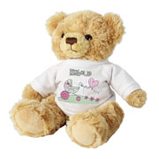Whimsical Pram Personalised Message Bear