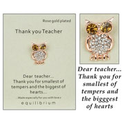 Teacher Wise Owl Rose Gold Pin Brooch