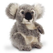 20cm Koala Bear Soft Toy