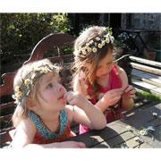 Silk Daisy Chain Headband Kit