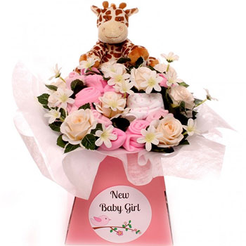 Pink Newborn Baby Girl Giraffe Clothing Bouquet