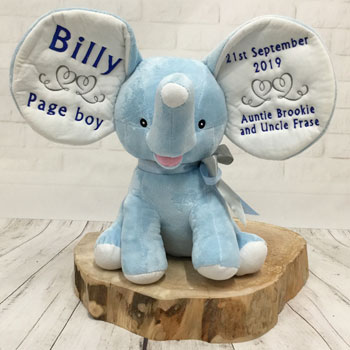 Personalised Page Boy Blue Teddy Bear Cubbies Elephant