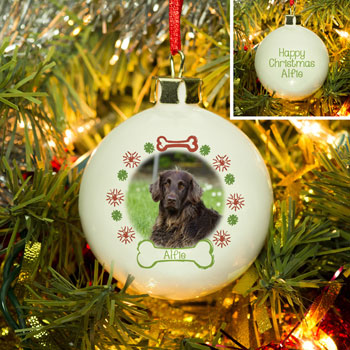 Bone & Snowflake Bone China Personalised Photo Dog Bauble