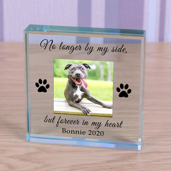 Personalised Pet Memorial Glass Token Forever in my Heart