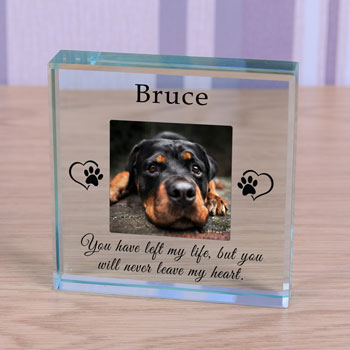 Personalised Glass Pet Memorial Token Never Leave My Heart