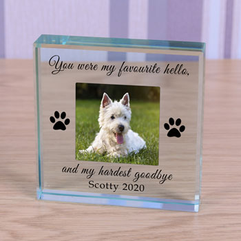 Personalised Photo Pet Memorial Glass Token Favourite Hello